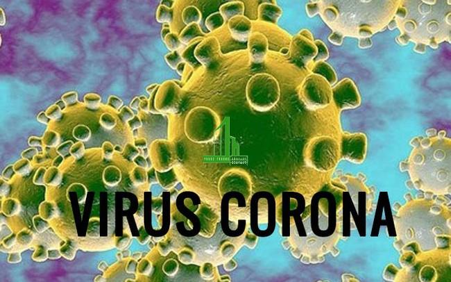 Cách ngăn ngừa lây nhiễm Virus Corona (Cov19)